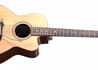 Predice Hendricks Acoustic Tremolo Custom Guitar with P.H.A.T. System 3