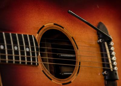 Predice Hendricks Acoustic Tremolo Custom Guitar with P.H.A.T. System
