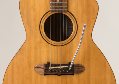 Predice Hendricks Acoustic Tremolo Custom Guitar with P.H.A.T. System 5