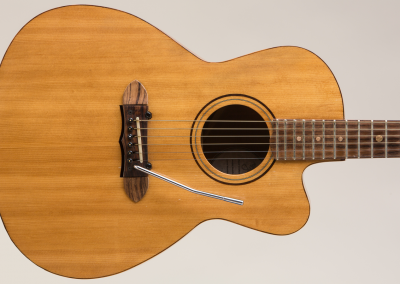 Predice Hendricks Acoustic Tremolo Custom Guitar with P.H.A.T. System 6